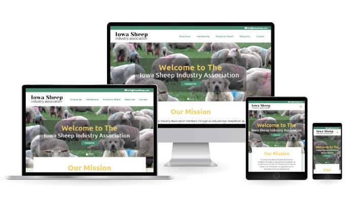iowa sheep responsive web design mockup